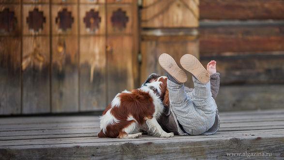 Фото Мальчик со своим щенком играют. Фотограф Елена