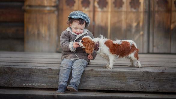 Фото Мальчик сидит рядом со своим щенком породы Кавалер кинг чарльз спаниель. Фотограф Елена