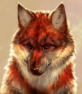 Фото Грустный волк, by ZakraArt