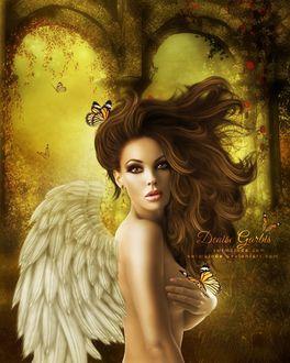 Фото Полуобнаженная девушка - ангел с бабочками на фоне природы и арочных проемов, by Denise Garbis