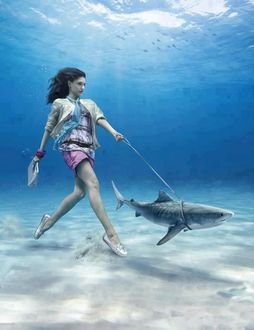 Фото Девушка под водой выгуливает акулу на поводке