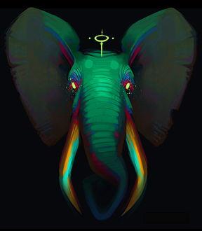 Фото Слон с украшением на голове, by RhythmAx