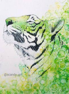 Фото Рисунок тигра в светло-зеленых тонах, by scandy girl