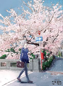 Фото Школьница идет по весенней улице, где у дороги цветет сакура