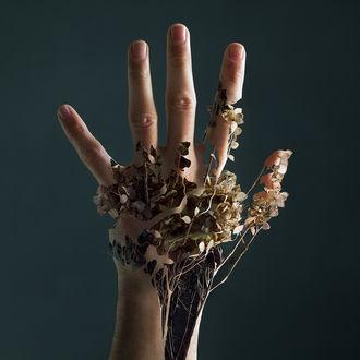 Фото Цветочная рука, by Xelistroll