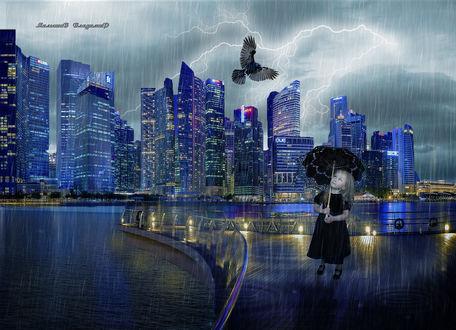 Фото В вечернем дождливом городе, девочка под зонтиком увидела летящую ворону