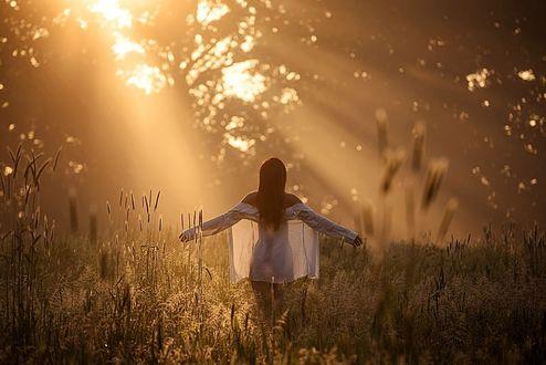 Фото Девушка в прозрачной одежде стоит на природе, фотограф Sebastian Luczywo