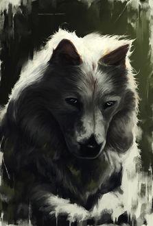 Фото Задумчивый волк, by lorantart