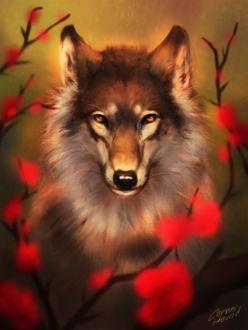 Фото Серый волк с карими глазами сидит среди веток с красными цветами, by CorvusHound