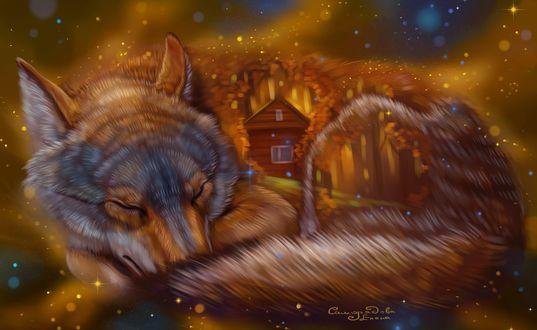 Фото Огромный спящий волк свернулся калачиком вокруг дома в осеннем лесу, работа художницы Елены Саморядовой