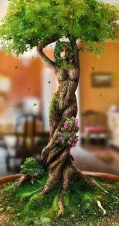 Фото Дерево в образе девушки
