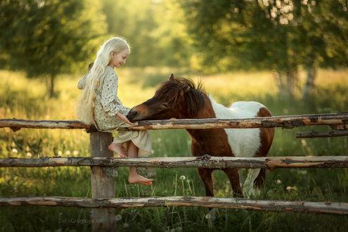 Фото Девочка сидит на брусчатом заборе перед лошадью. Фотограф Дарья Громова
