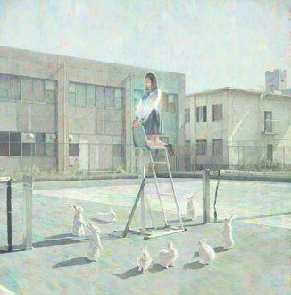 Фото Девочка стоит на лестнице в окружении кроликов