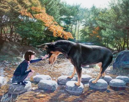 Фото Девушка и огромная собака на камнях посреди ручья, корейский художник Woo Jeong Jae / Ву Джонг Дже