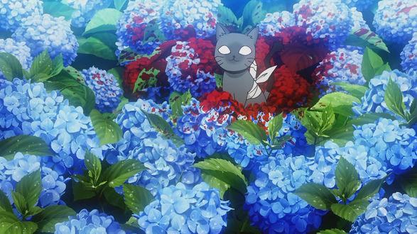 Фото Перебинтованный котенок Baabu / Бабу из аниме Sankarea / Санка Рэя сидит в цветах гортензий