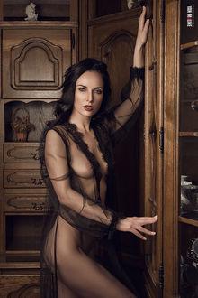 Фото Девушка в пеньюаре стоит у шкафа. Фотограф Ян Маклайн