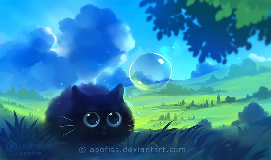 Фото Черный котенок сидит в траве перед мыльным пузырем, by Apofiss