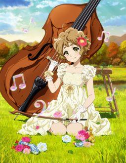 Фото Сапфир Кавашима / Sapphire Kawashima из аниме Hibike! Euphonium / Звучи! Эуфониум с контрабасом