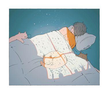 Фото Спящий мальчик с котятами