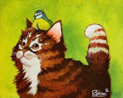 Фото Кошка с птицей на ней, by Raphael Vavasseur