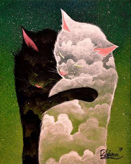 Фото Кошки с изображением облаков на них, черная и белая, by Raphael Vavasseur