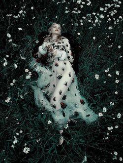 Фото Модель Stella Lucia лежит в траве с ромашками, фотограф Camilla Akrans (© zmeiy), добавлено: 14.07.2017 11:33