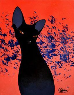 Фото Черная кошка на ярком фоне, by Raphael Vavasseur (© zmeiy), добавлено: 14.07.2017 12:02
