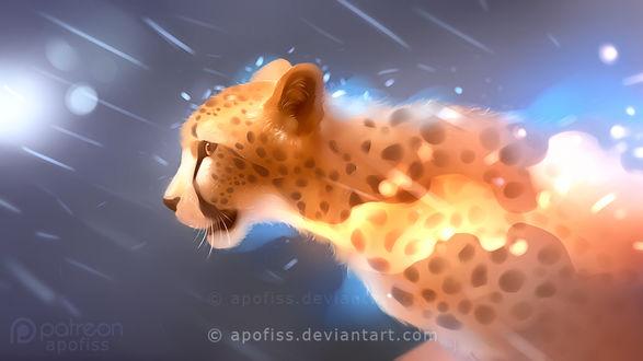Фото Леопард под дождем, by Apofiss