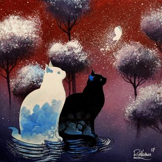 Фото Белый и черный коты, сидя в воде, смотрят на пролетающую бабочку, by Raphael Vavasseur