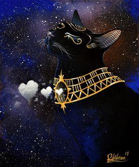 Фото Кошка с украшением на шее, by Raphael Vavasseur
