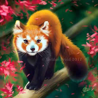 Фото Милая красная панда стоит на ветке дерева, by GoldenDruid