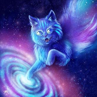 Фото Полосатый кот в космосе, by TrollGirl