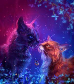 Красивая персикового цвета кошка, обои с кошками 40