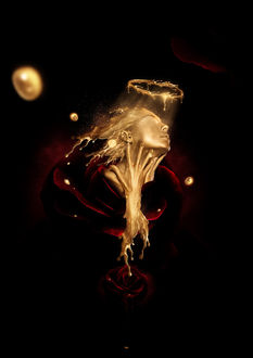 Фото Работа Roses and Gold / розы и золото, by BidoPortfolio
