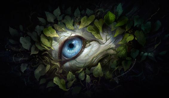 Фото Голубой глаз волка среди листвы, by AlectorFencer