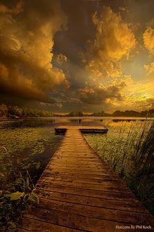 Фото Деревянный причал на тихой заводи, by Phil Koch
