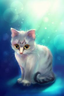 Фото Серый кот на голубом фоне, by izandra