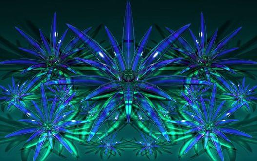 Фото Синие прозрачные цветы на темном фоне