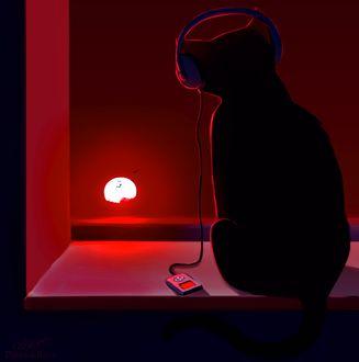 Фото Черный кот в наушниках смотрит на закат, by DamaskRose0503