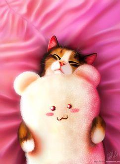 Фото Кот с мягкой игрушкой лежит на розовой ткане, by DamaskRose0503