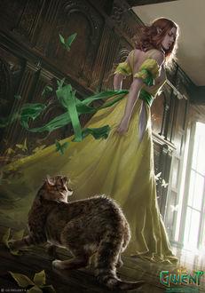 Фото Кот рычит на девушку-эльфийку, by akreon