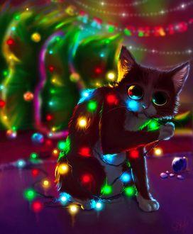 Фото Котенок запутался в новогодней гирлянде, art by Damaskrose0503