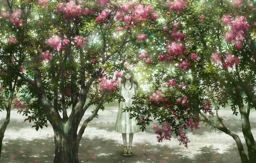 Фото Девушка в белом платье стоит в цветущем саду, by kazami395