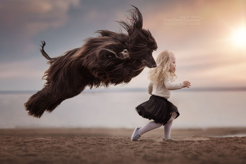 Фото Девочка и афганская борзая бегут по берегу, фотограф Андрей Селиверстов