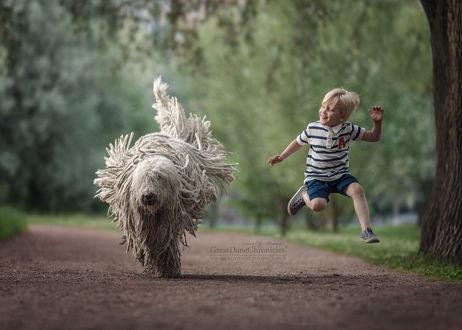 Фото Мальчик с комондором прыгает в парке, фотограф Андрей Селиверстов
