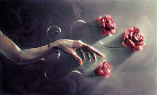 Фото Рука с красными розами, by Andrea Buzzelli
