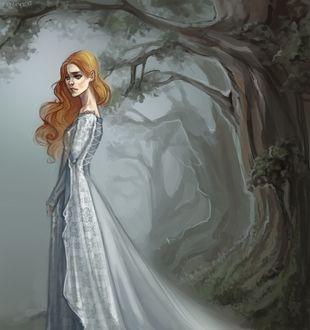 Фото Sansa Stark / Санса Старк из сериала Game Of Trones / Игра Престолов, by Kateryz