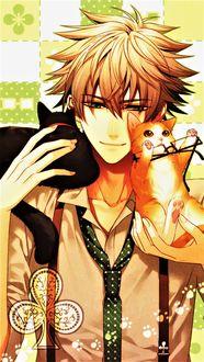 Фото Кент играет с котятами, арт к аниме Амнезия / Amnesia