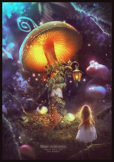 Фото Девочка стоит перед большим светящимся грибом с фонарем, by saritaangel07