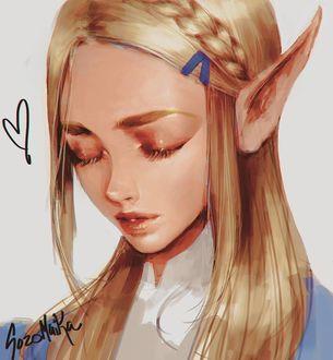 Фото Princess Zelda / Принцесса Зельда из игры Zelda no Densetsu / Skyward Sword,